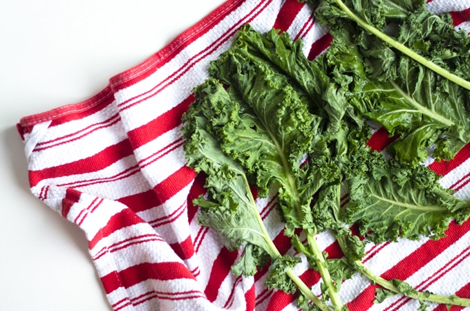 Sea Salted Kale Chips