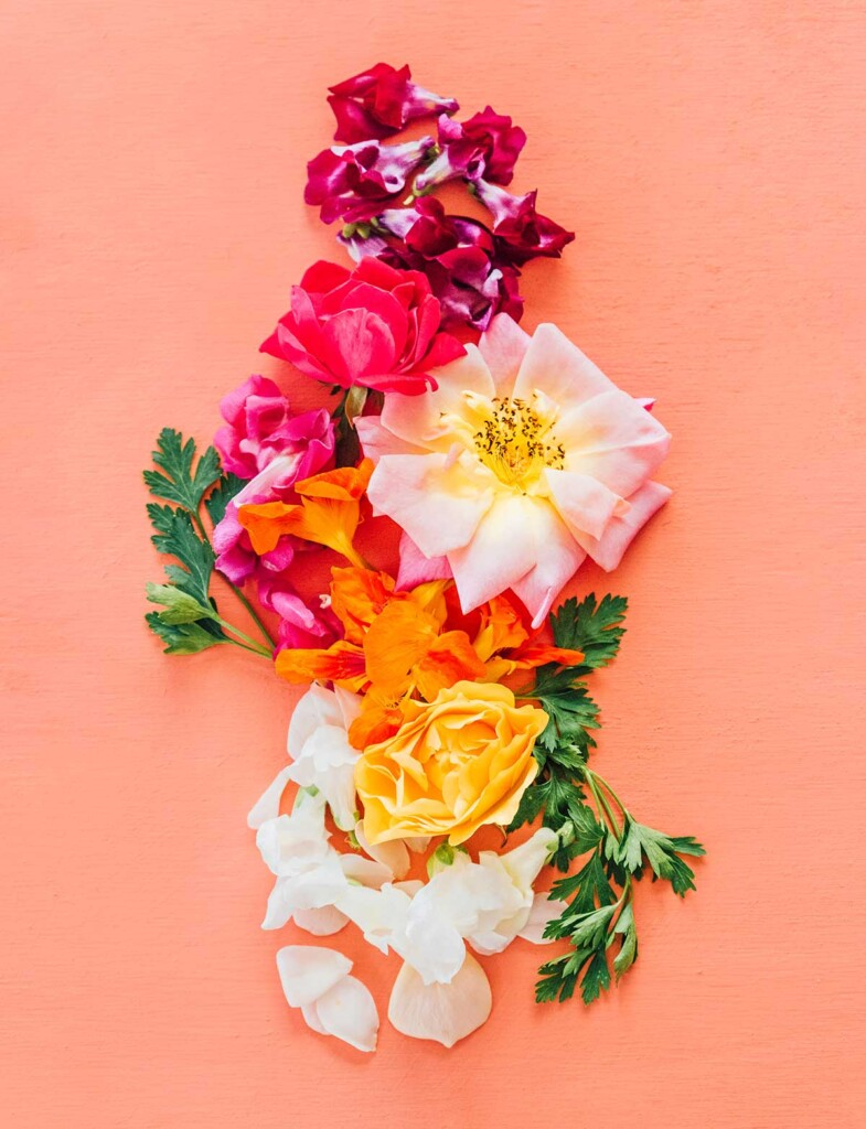 Edible flowers arranged in a flat layer on an orange background