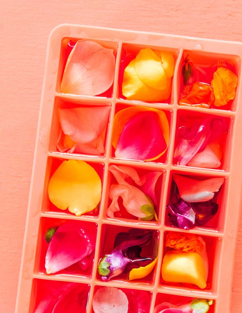 An ice cube tray filled with water, edible flowers, and elderberry syrup
