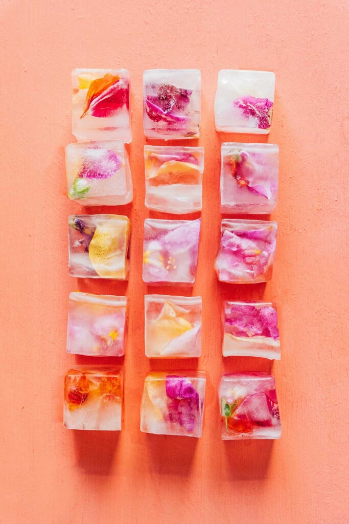 Edible flower ice cubes lined up in rows on an orange background