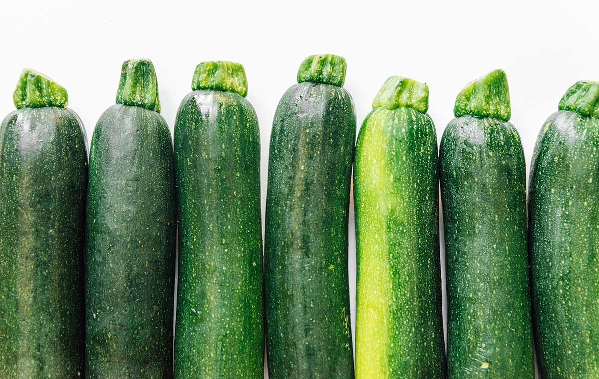 Zucchini 101: Everything You Need To Know About Zucchini Squash