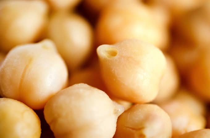 Close up photo of chickpeas