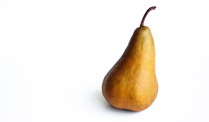 Bosc pear on a white background