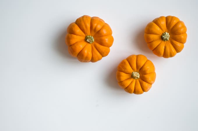 Pumpkin on white background