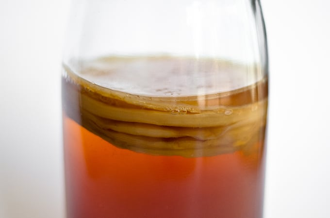 Picture of a kombucha SCOBY in a jar with white background