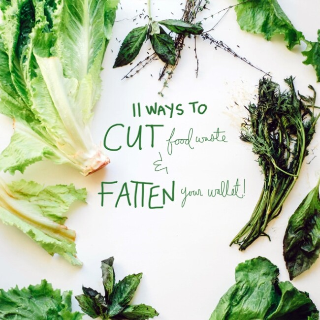 Cut Food Waste and Fatten Your Wallet with these 11 simple tricks