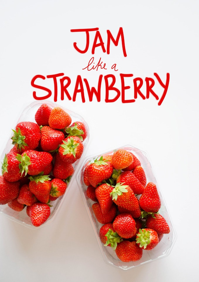 Strawberry 101: Everything You Need To Know About Strawberries