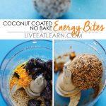 Coconut Coated No Bake Energy Bites