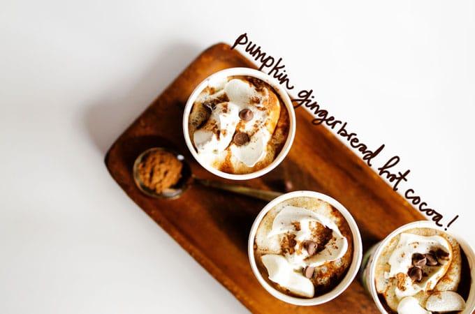 Pumpkin Gingerbread Hot Cocoa