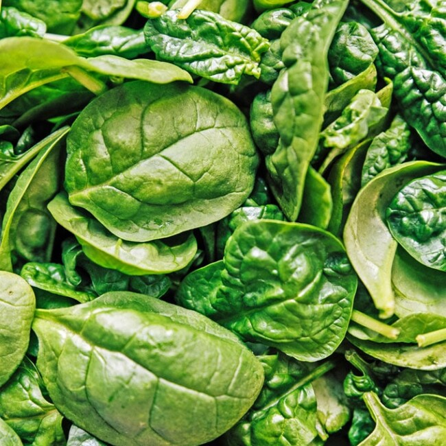 Close-up photo of spinach leaves