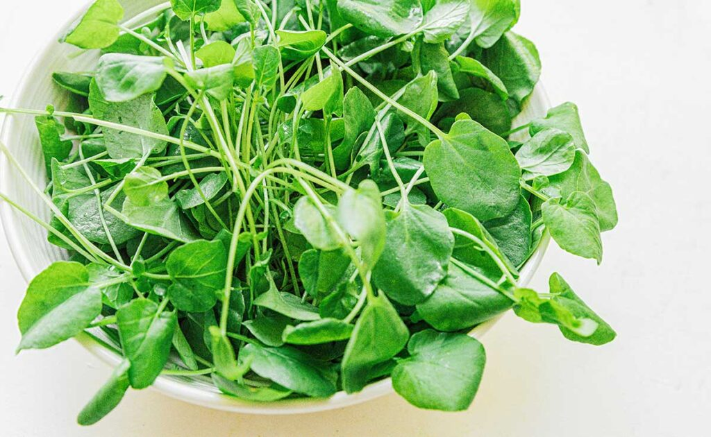 Watercress leaves in a bowl