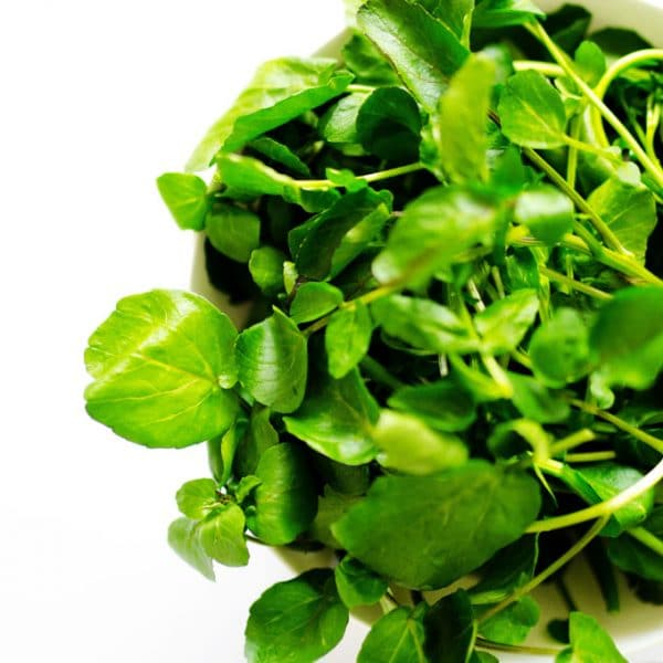 Everything you need to know about how to use watercress, including the different varieties, how to store it, nutrition information, and more!