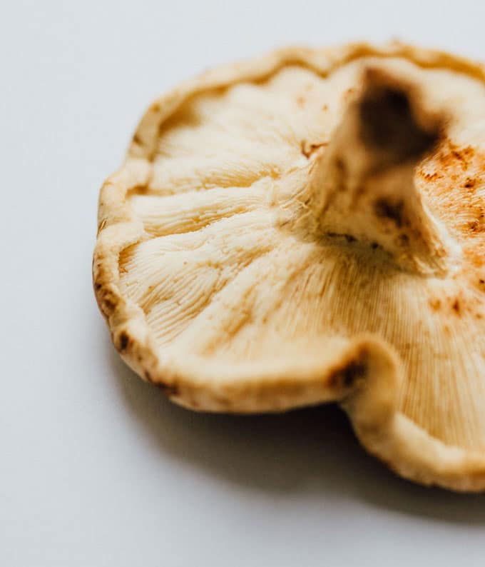 Shiitake mushroom on white paper - Running through the main types of mushrooms and how to use them to add savory, meaty flavor and texture to your vegetarian cooking!