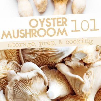 Oyster mushrooms photo