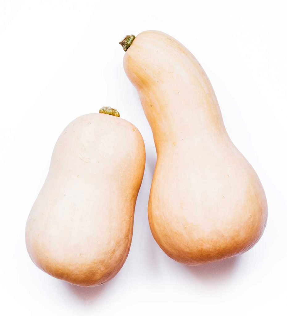 Butternut squash on a white background