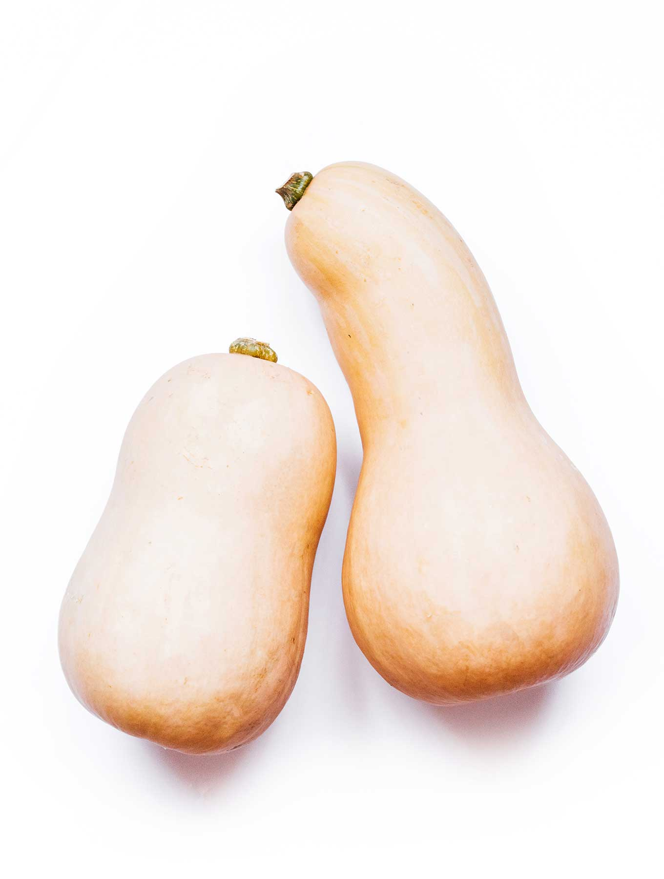 Butternut Squash 101 Everything You Need To Know About Butternut