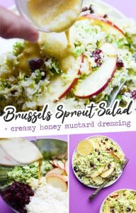 This Shaved Brussels Sprout Salad recipe is a chop it and toss it kind of dish, with sliced apples, dried cranberries, riced cauliflower, and shaved fresh Brussels sprouts. It's all tied together with the most creamy honey mustard dressing, and ready in under 15 minutes!