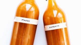 Mango Kombucha