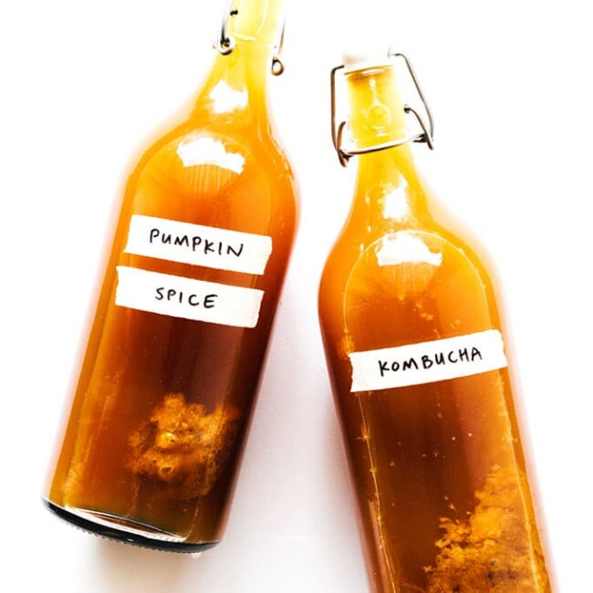 Pumpkin spice kombucha in fermentation bottles on white background