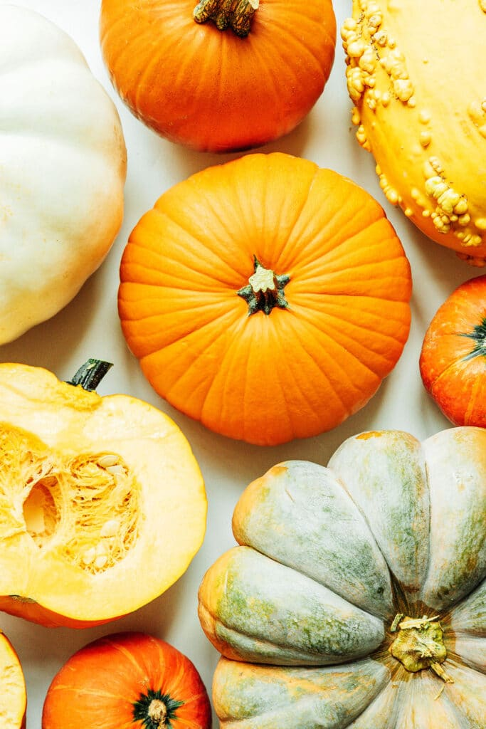 A variety of pumpkins laid out neatly on a white background