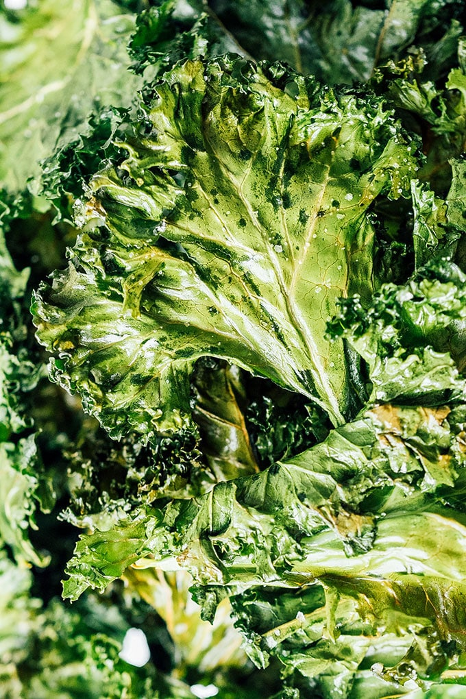 Close up photo of kale chips