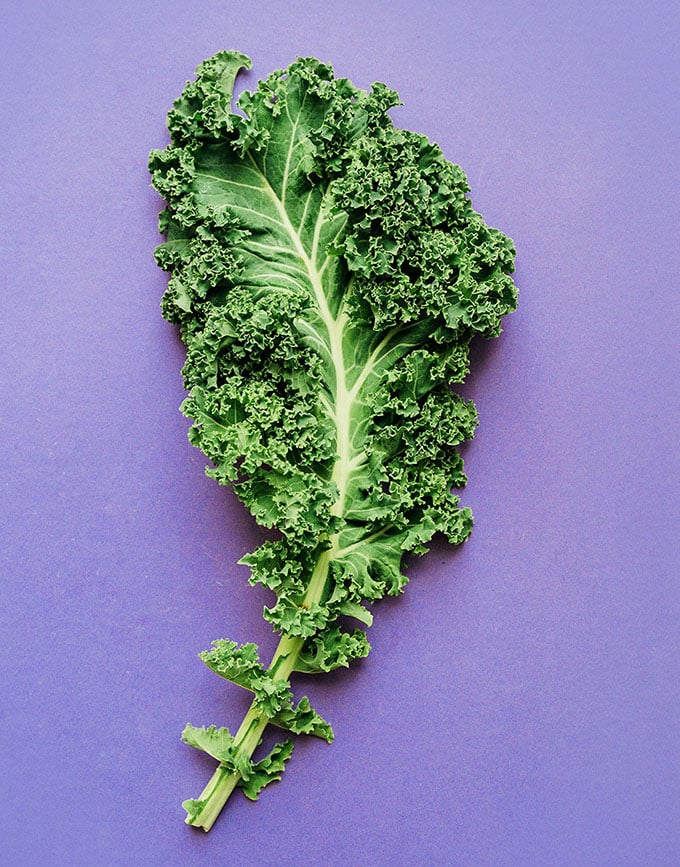 Kale leaf on purple background