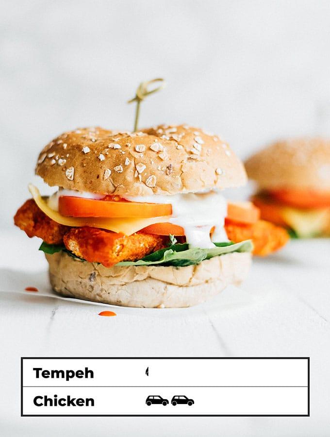 Carbon footprint of tempeh sandwich