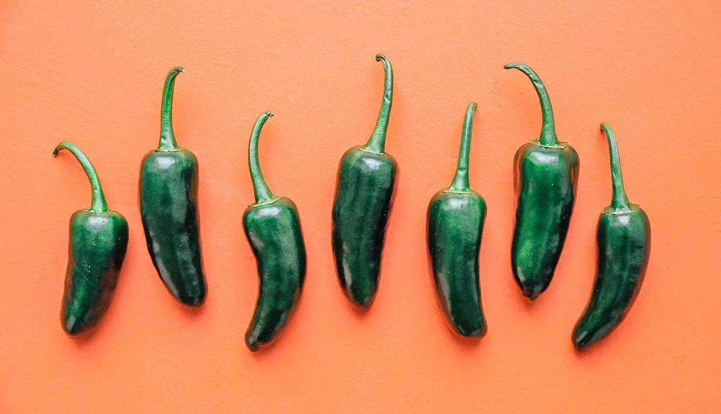 Seven jalapeños lined up on an orange background