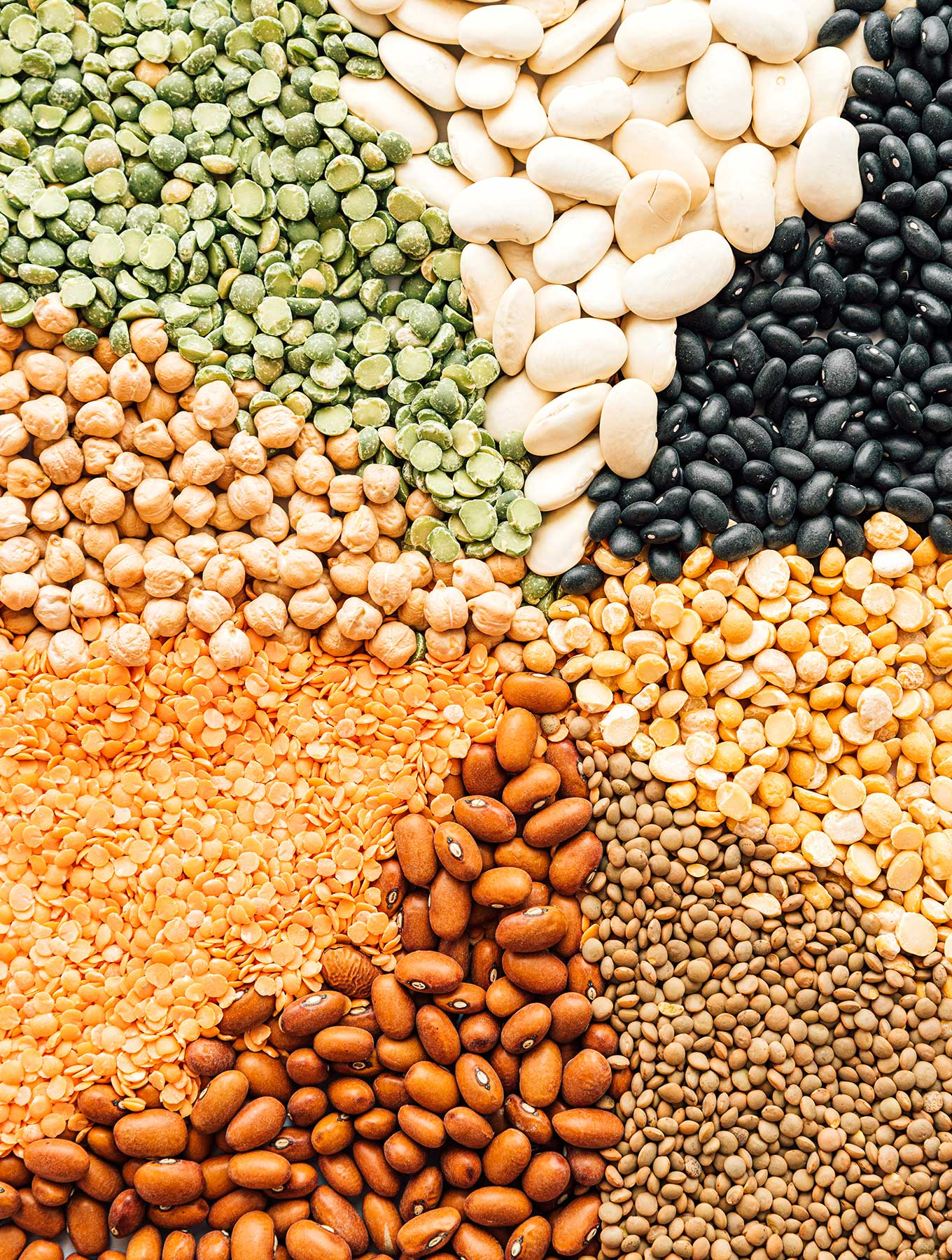 Legumes 101 Everything To Know About Legumes Live Eat Learn