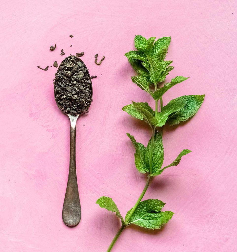 Chinese gunpowder tea and fresh mint on a pink background