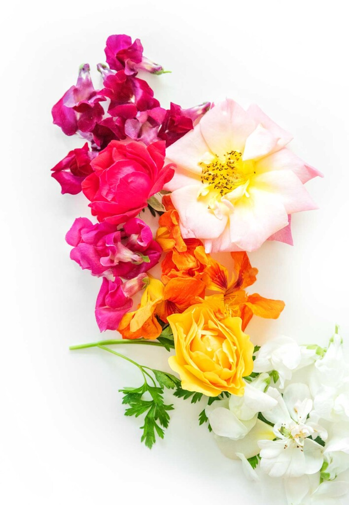 Edible flowers on a white background