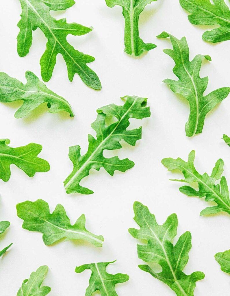 Arugula leaves arranged neatly on a white background