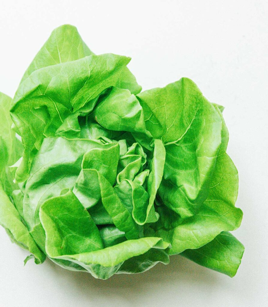 A close-up image detailing the texture and color of a head of green butterhead lettuce