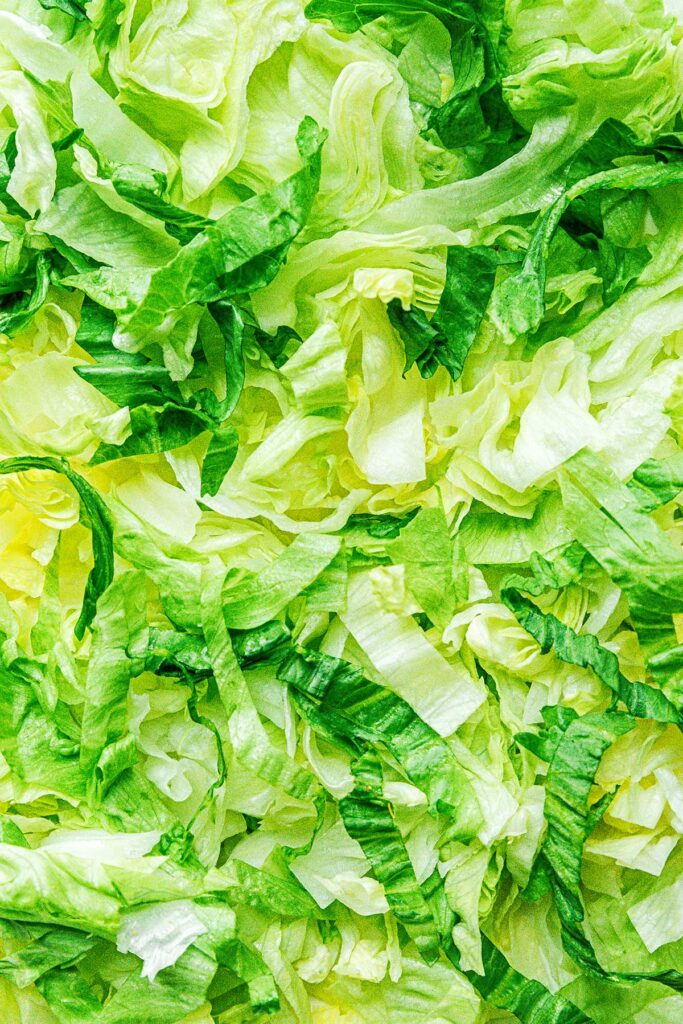 An up-close view detailing the color and texture of shredded iceberg lettuce