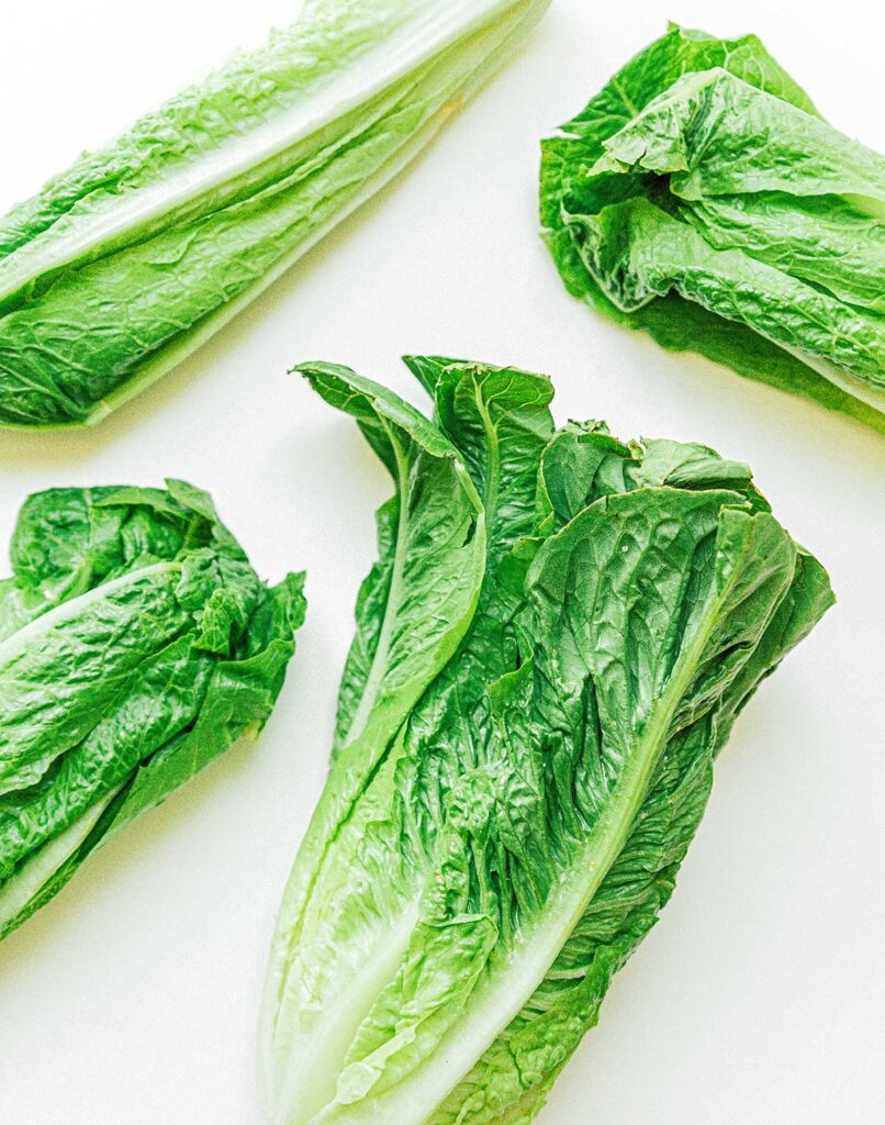 Four hearts of romaine arranged on a white background