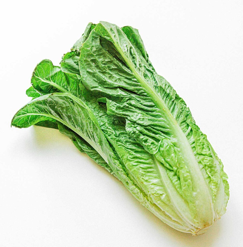 A fresh romaine heart on a white background