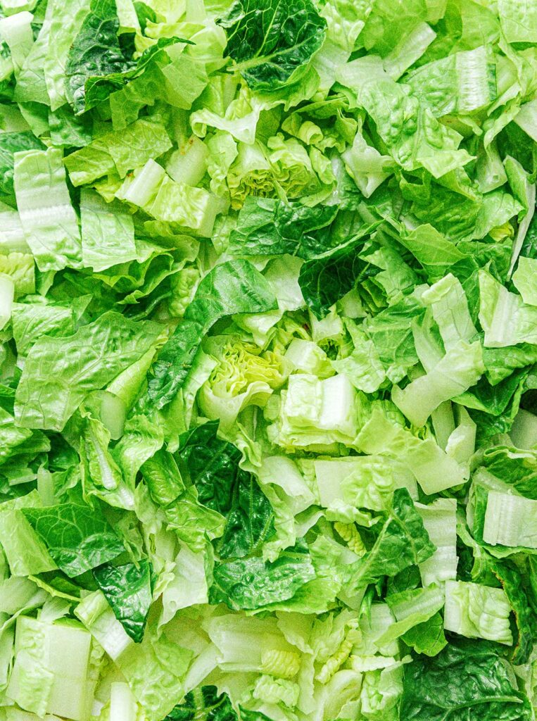 A up-close view detailing the texture of sliced romaine lettuce