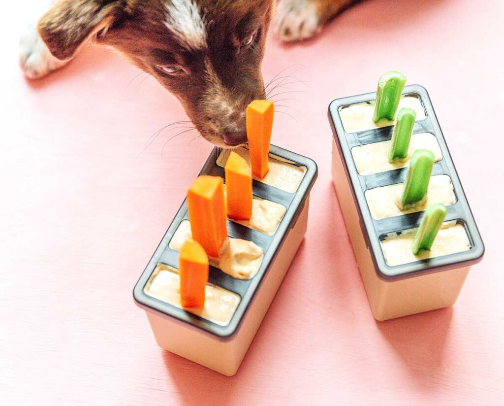Dog eating dog pupsicles with carrot and celery sticks