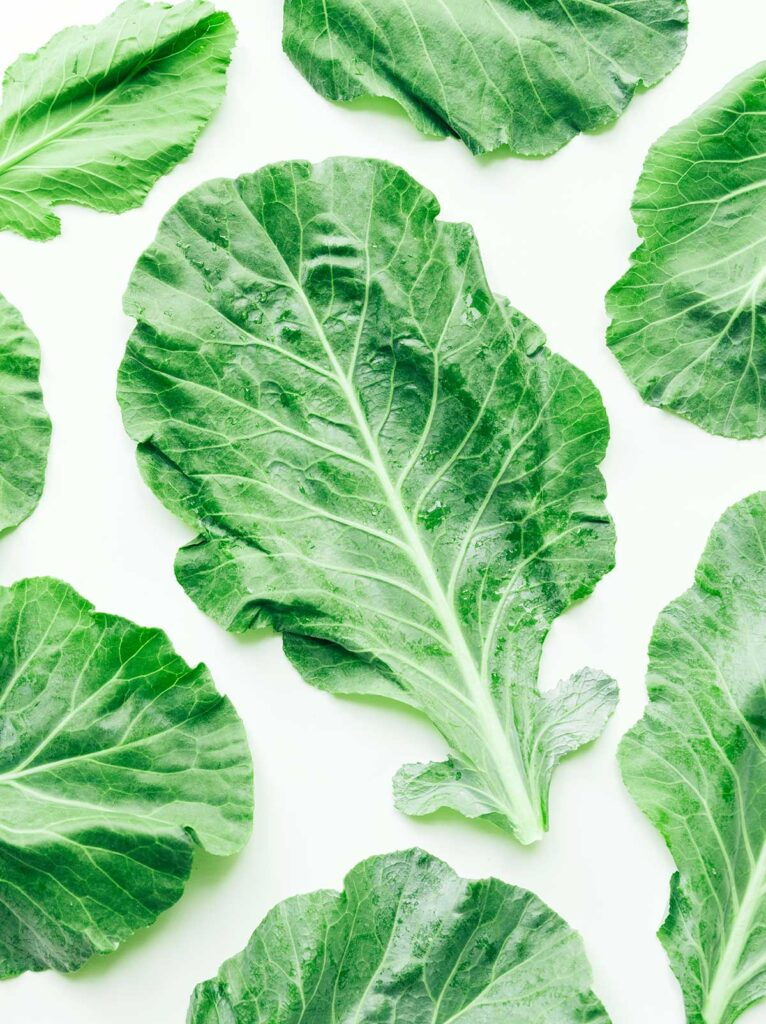 8 collard green leaves laid out on a white background
